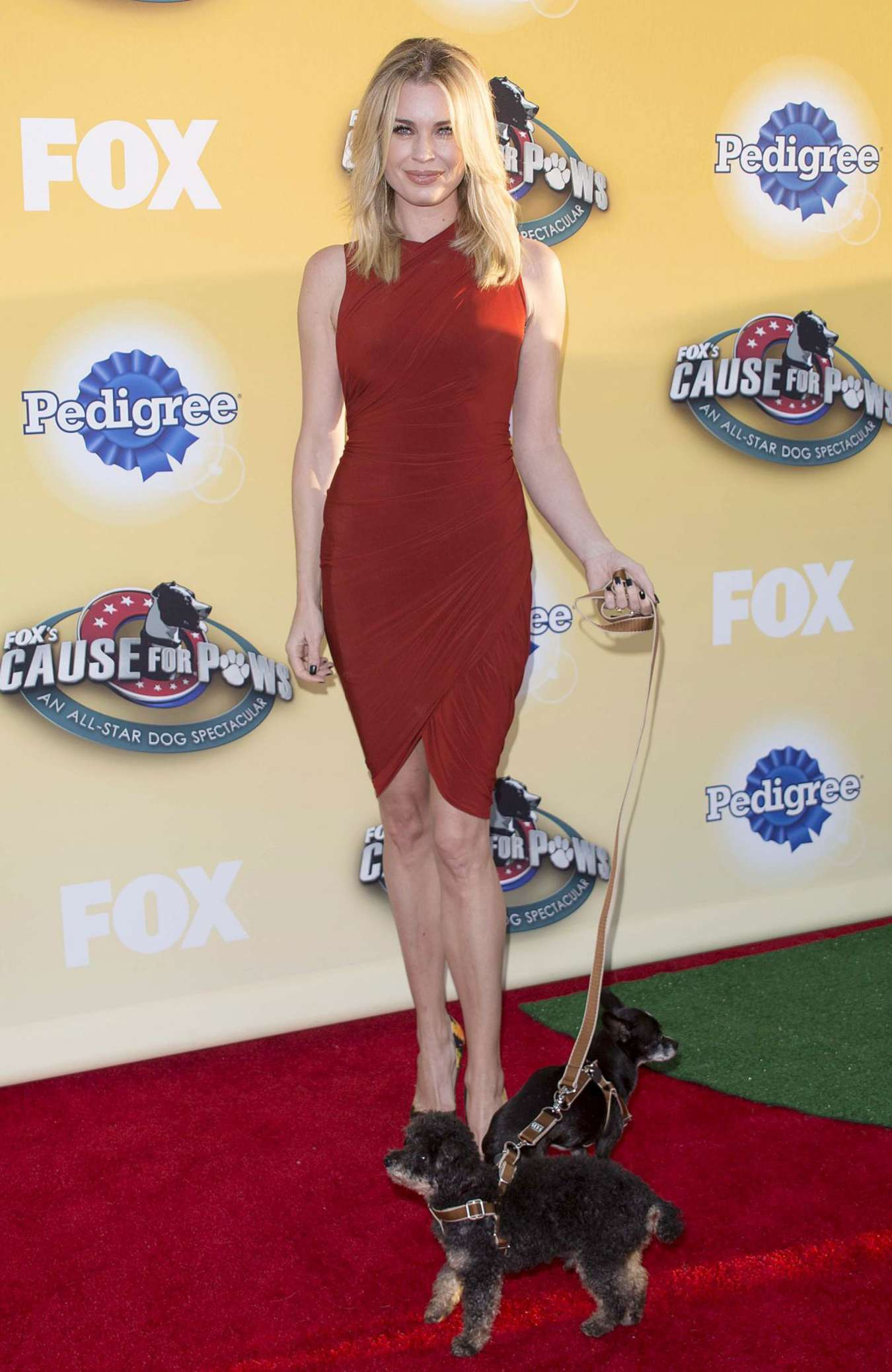 Rebecca Romijn FOXs Cause For Paws An All-Star Dog Spectacular in Santa Monica