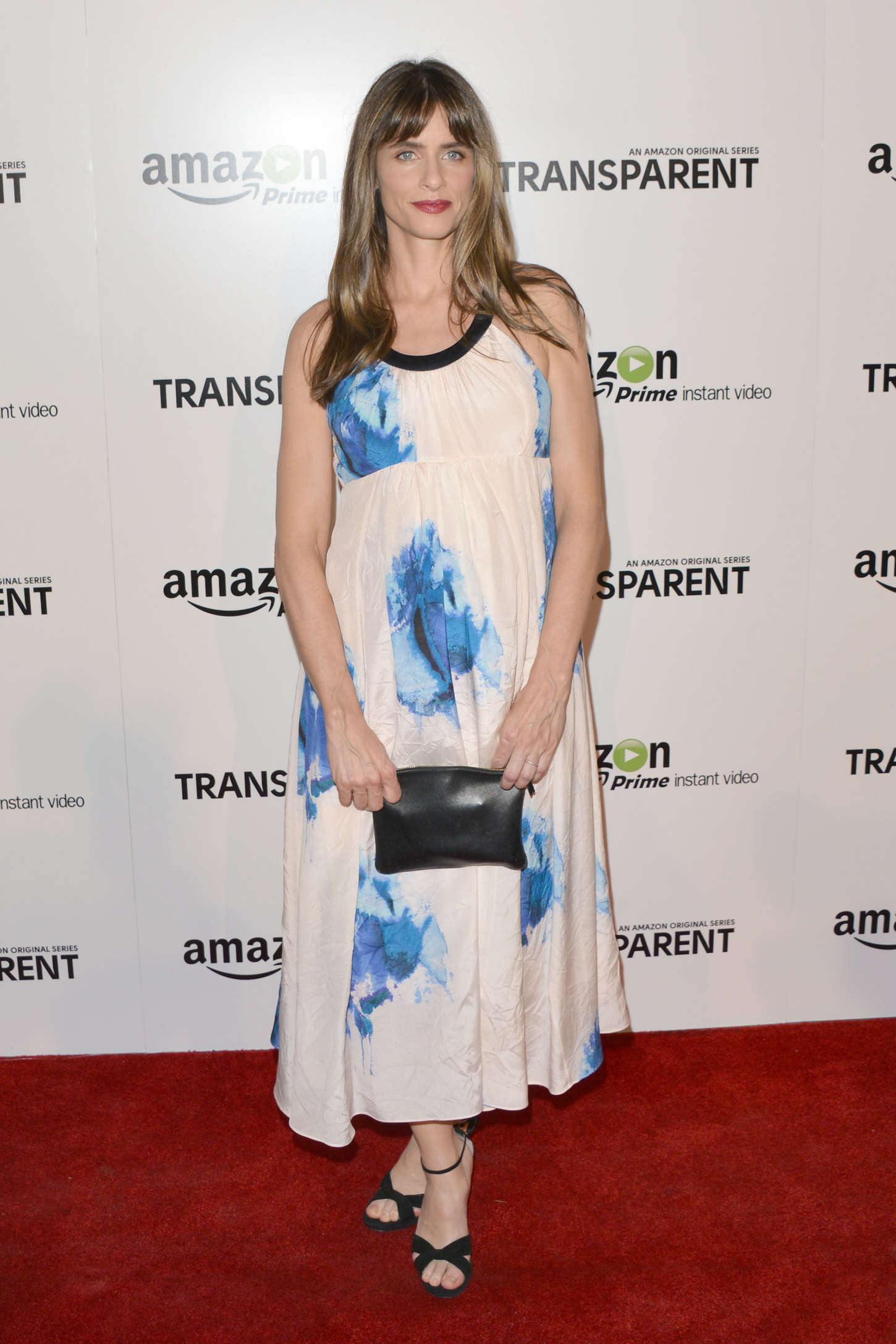 Amanda Peet Transparent Premiere in Los Angeles