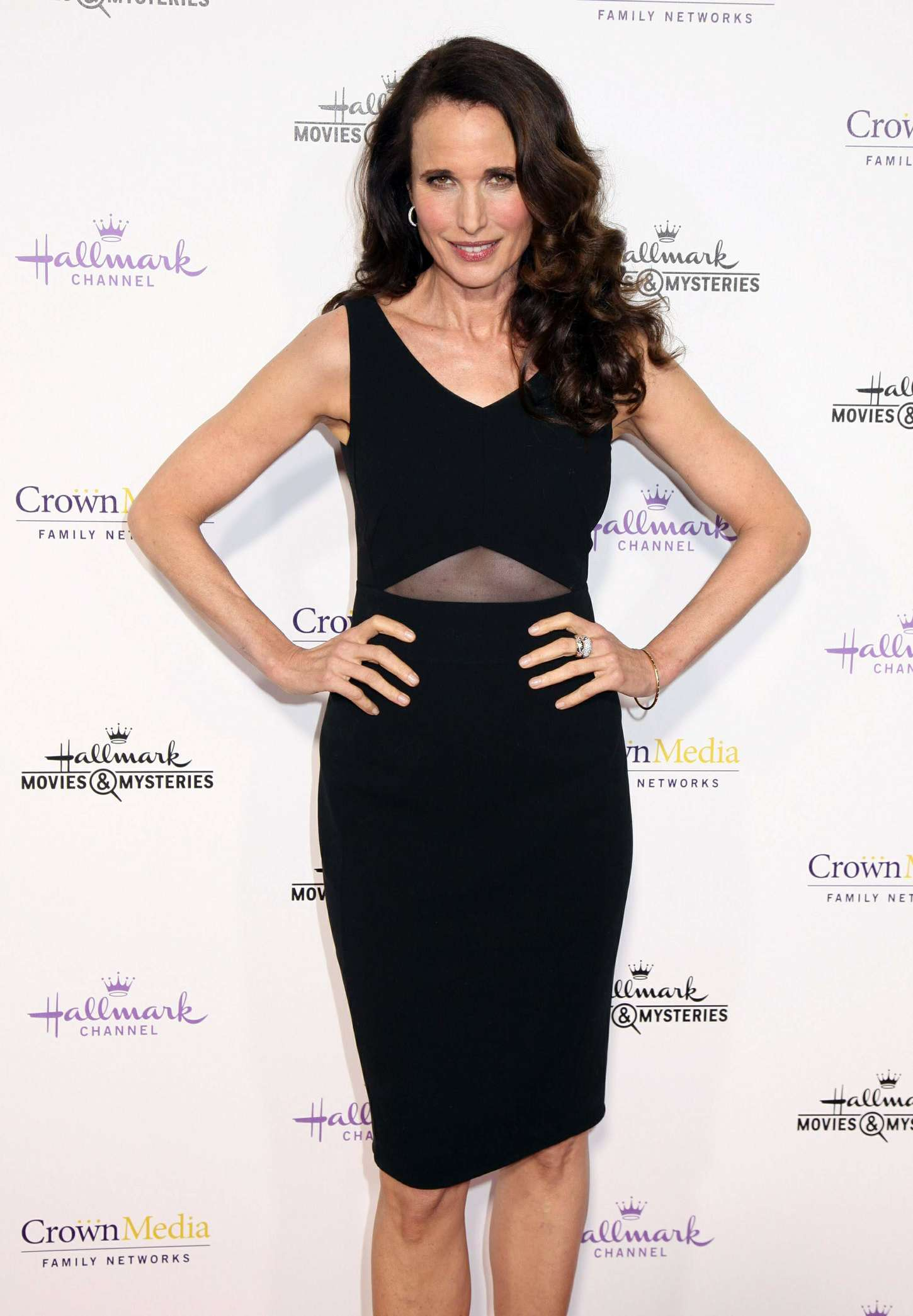 Andie MacDowell Hallmark Channel TCA Press Tour in Pasadena