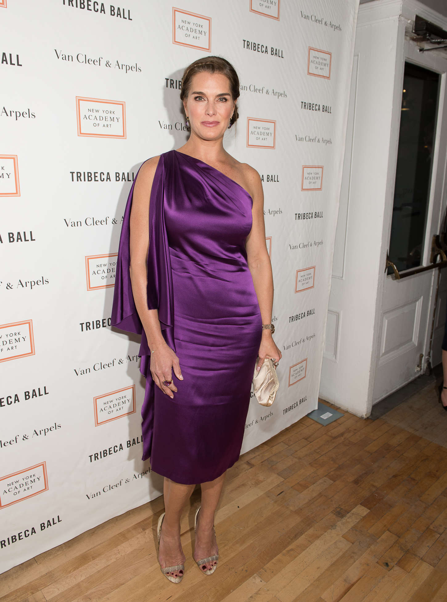 Brooke Shields Tribeca Ball in New York