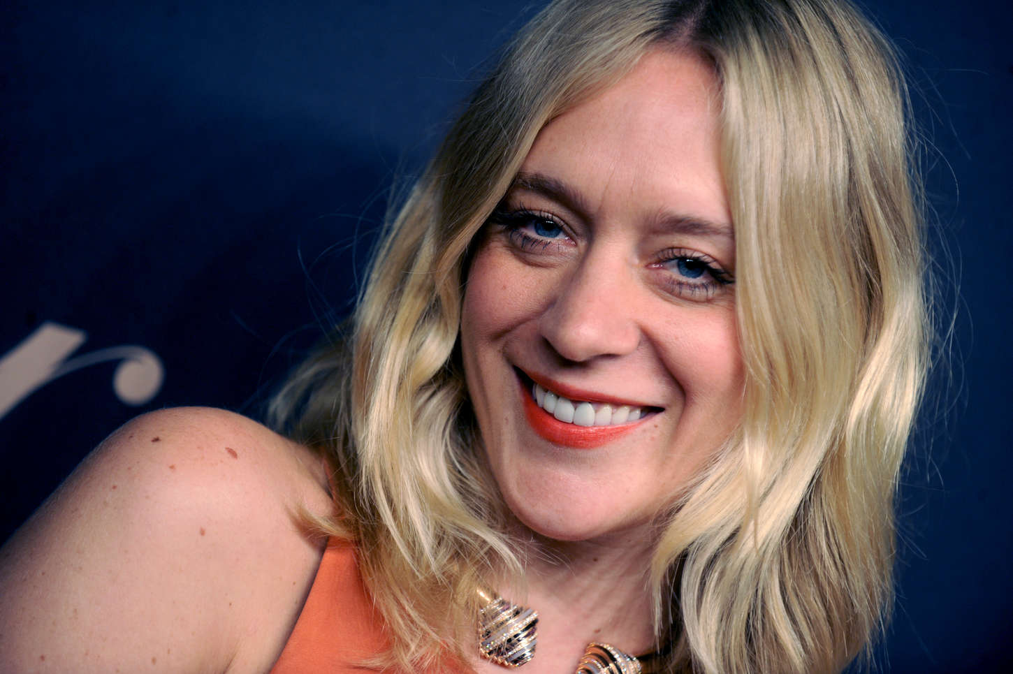 Chloe Sevigny Panthere de Cartier Collection Dinner Party in New York