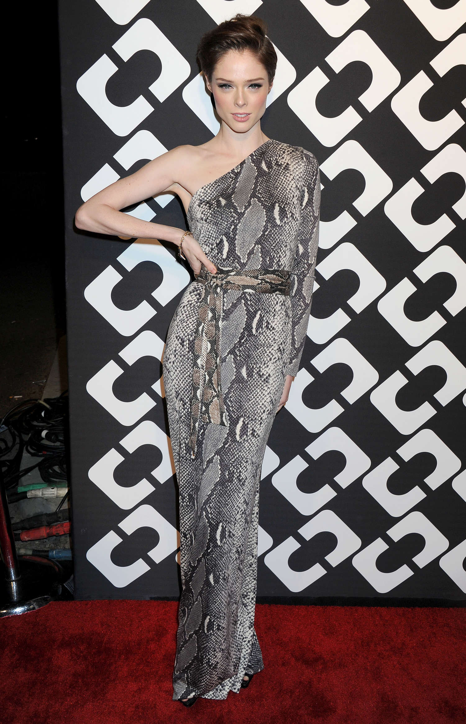 Coco Rocha Diane Von Furstenbergs Journey Of A Dress Exhibition in Los Angeles