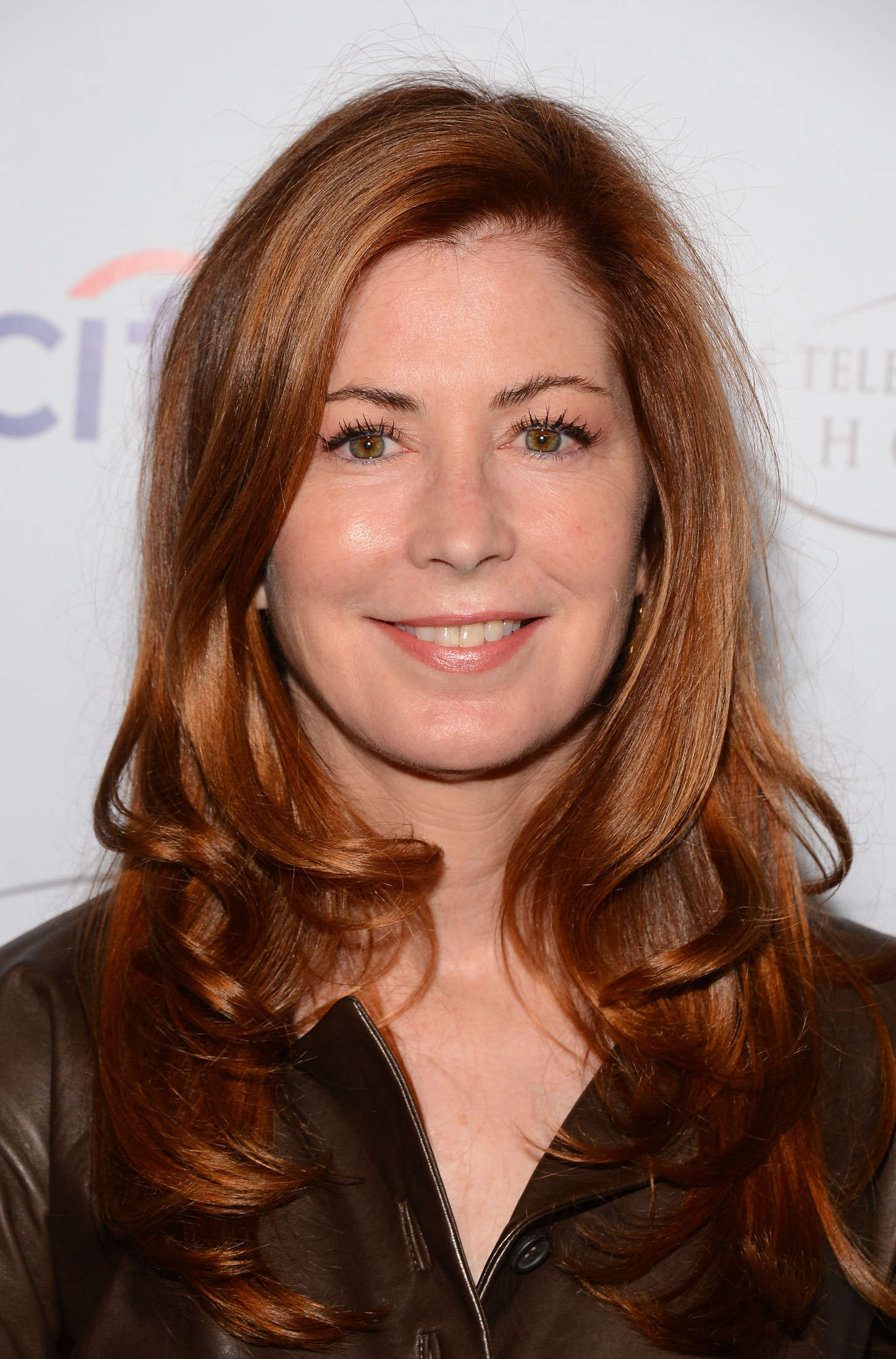 Dana Delany Annual Television Academy Honors in Beverly Hills