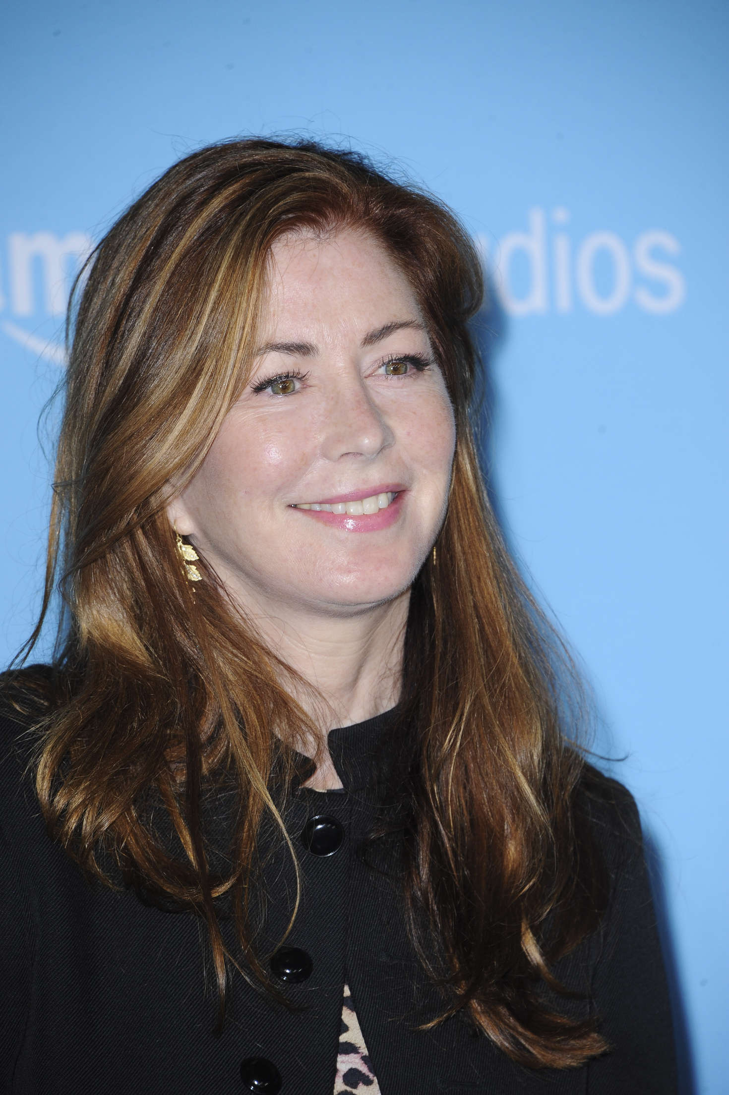 Dana Delany Love and Friendship Premiere in Los Angeles