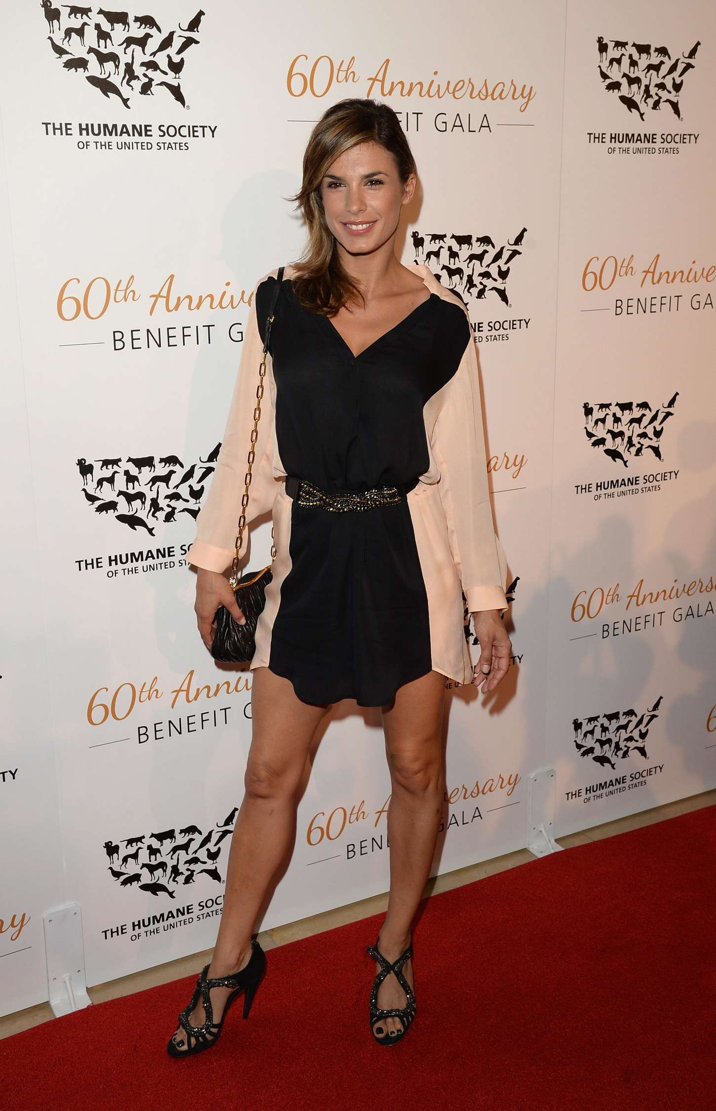 Elisabetta Canalis Anniversary Humane Society of The United States Gala in Beverly Hills