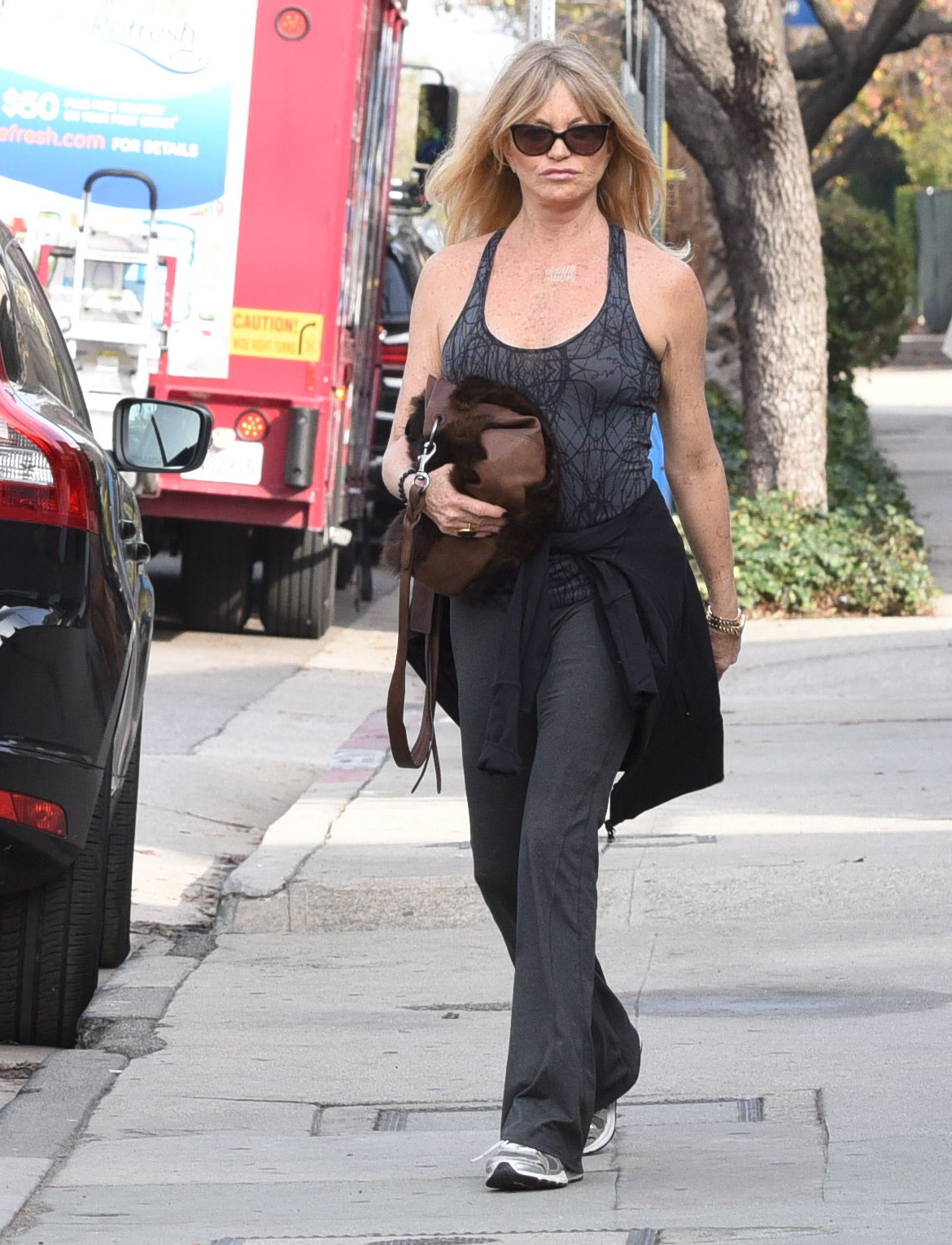 Goldie Hawn go out in Brentwood