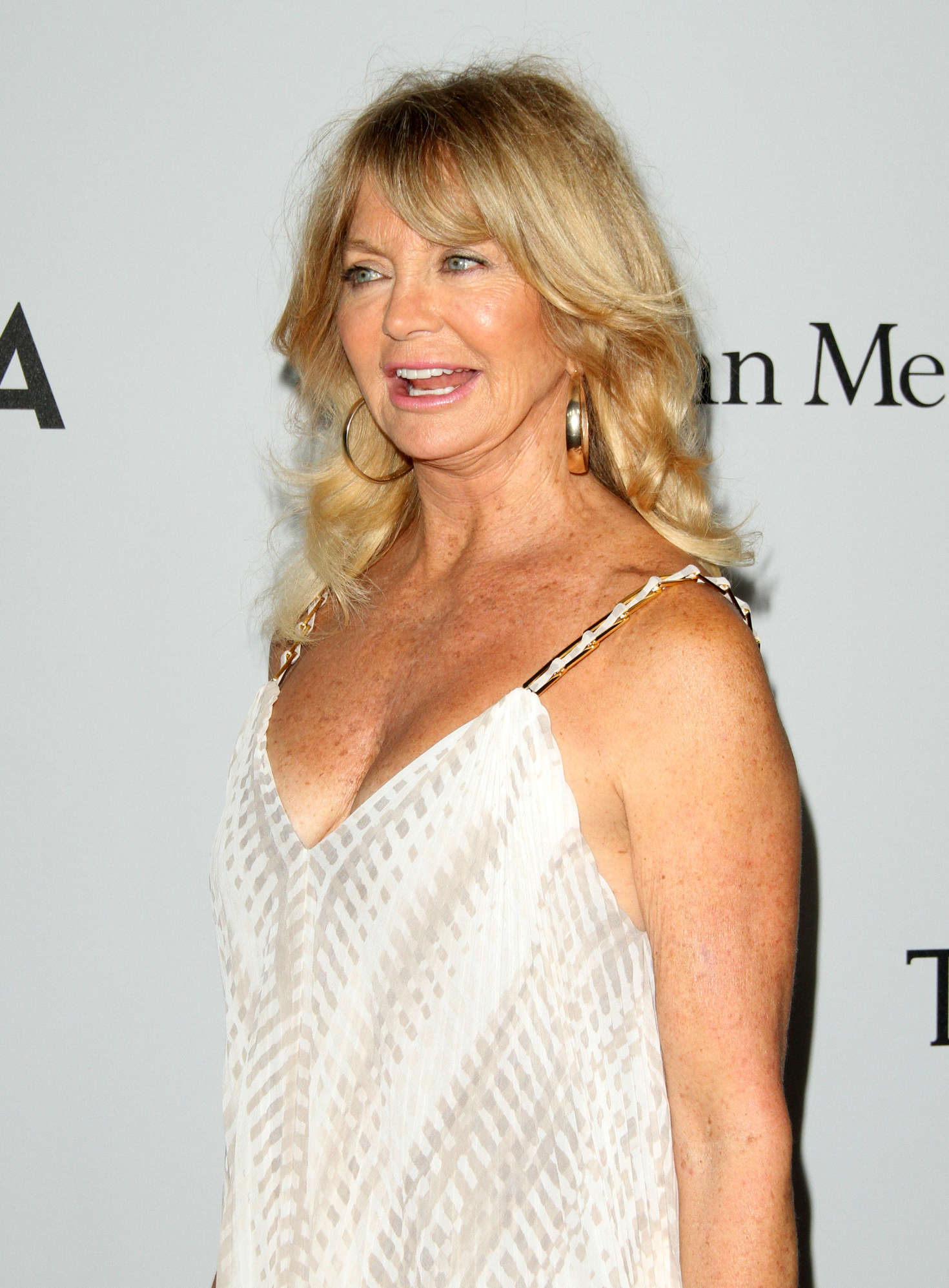 Goldie Hawn Launch of The Parker Institute for Cancer Immunotherapy in Los Angeles