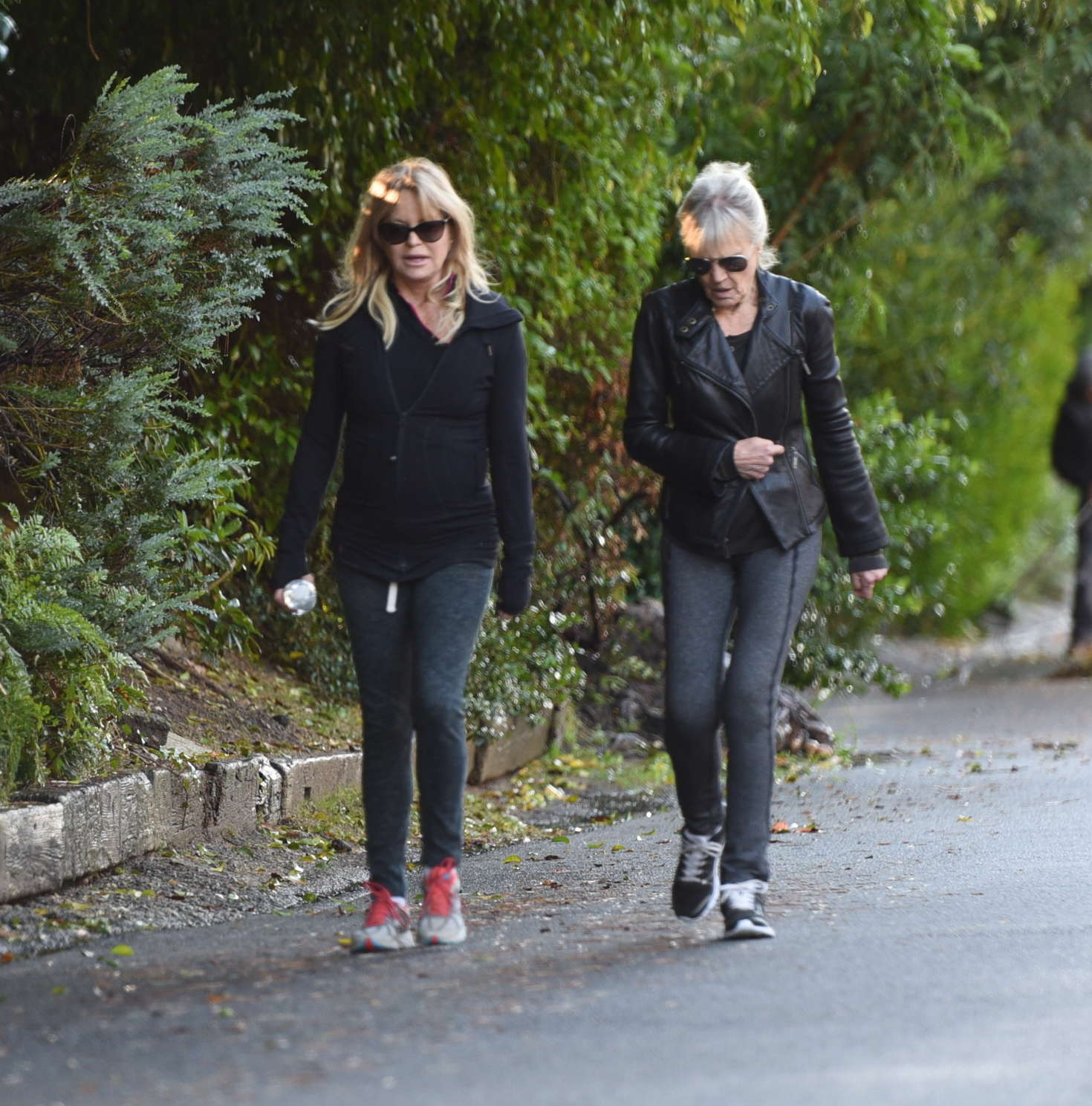 Goldie Hawn out for a walk in Brentwood