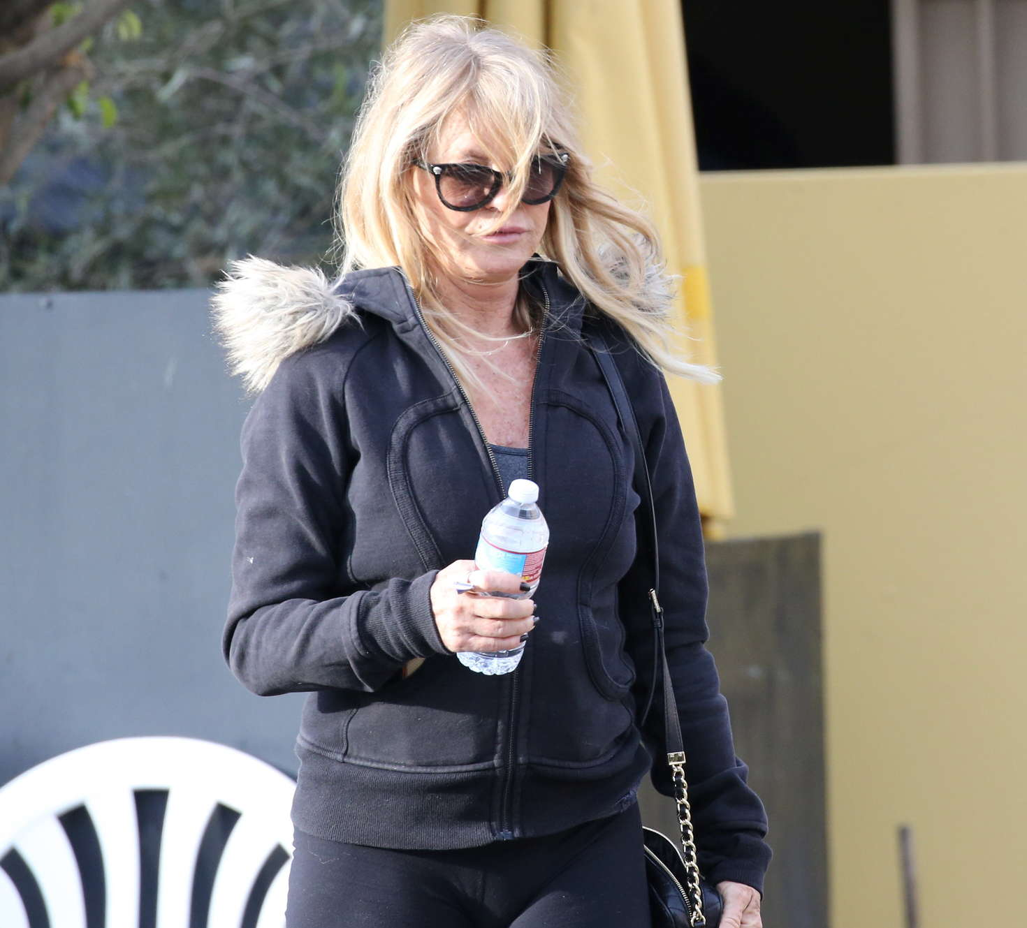 Goldie Hawn out in Los Angeles