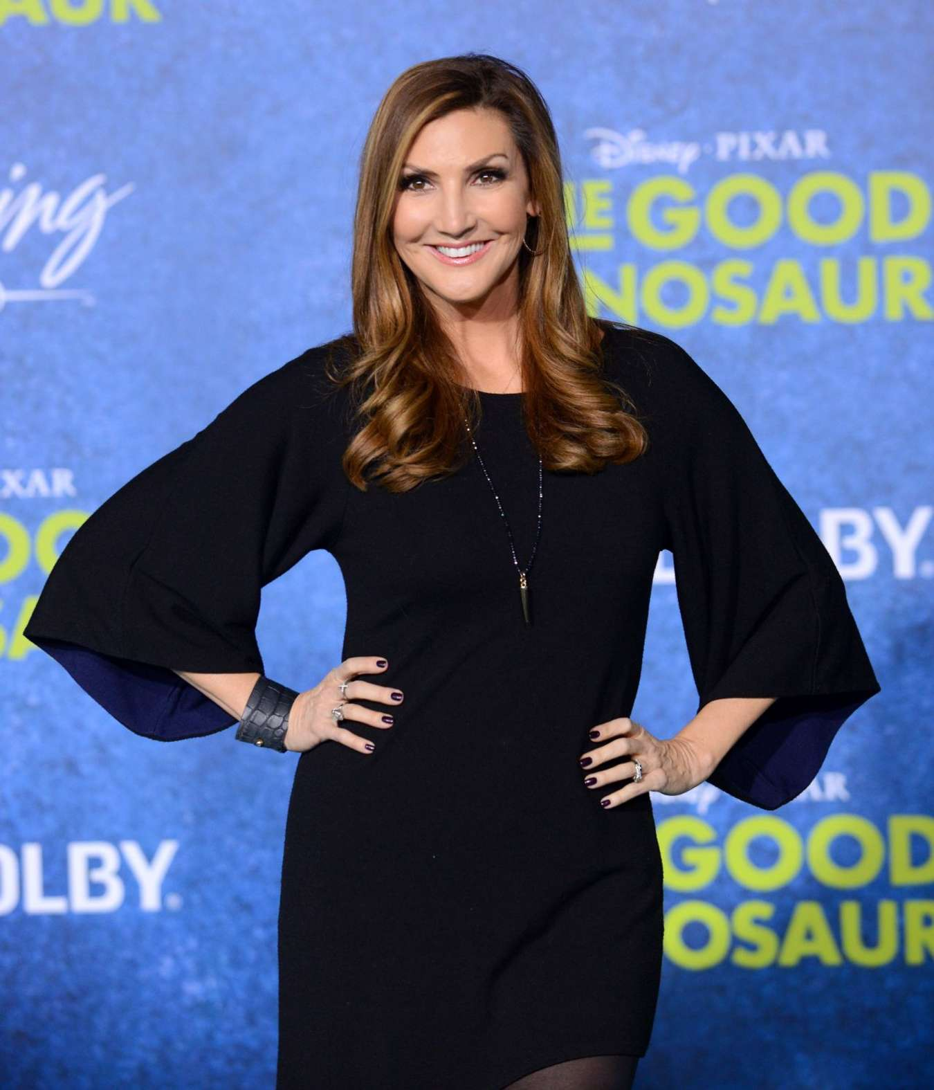 Heather McDonald The Good Dinosaur Premiere in Hollywood