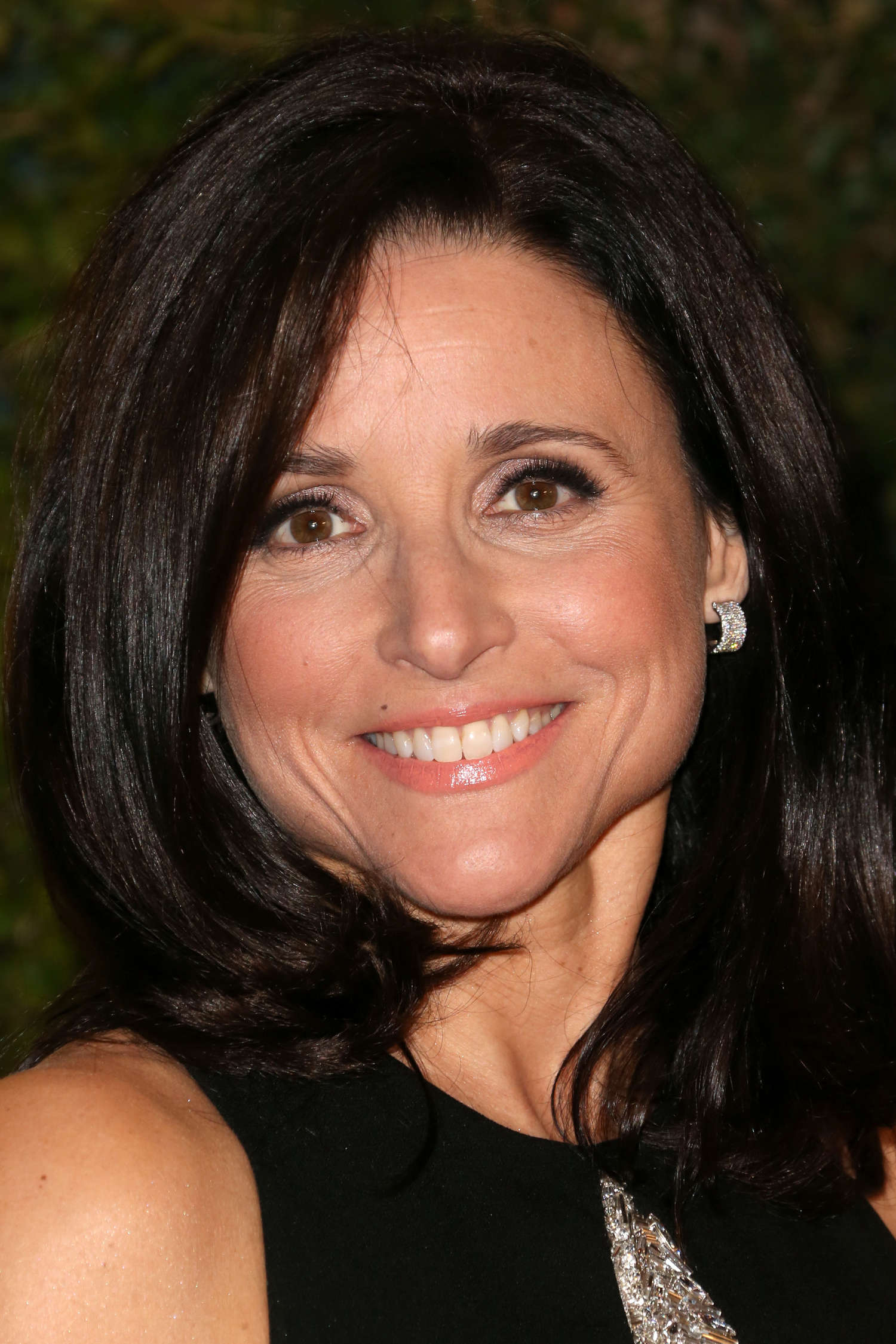 Julia Louis-Dreyfus AMPAS Governors Awards in Hollywood