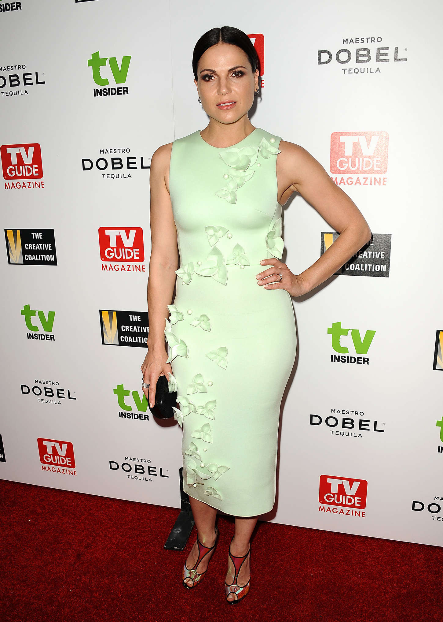Lana Parrilla Television Industry Advocacy Awards in West Hollywood