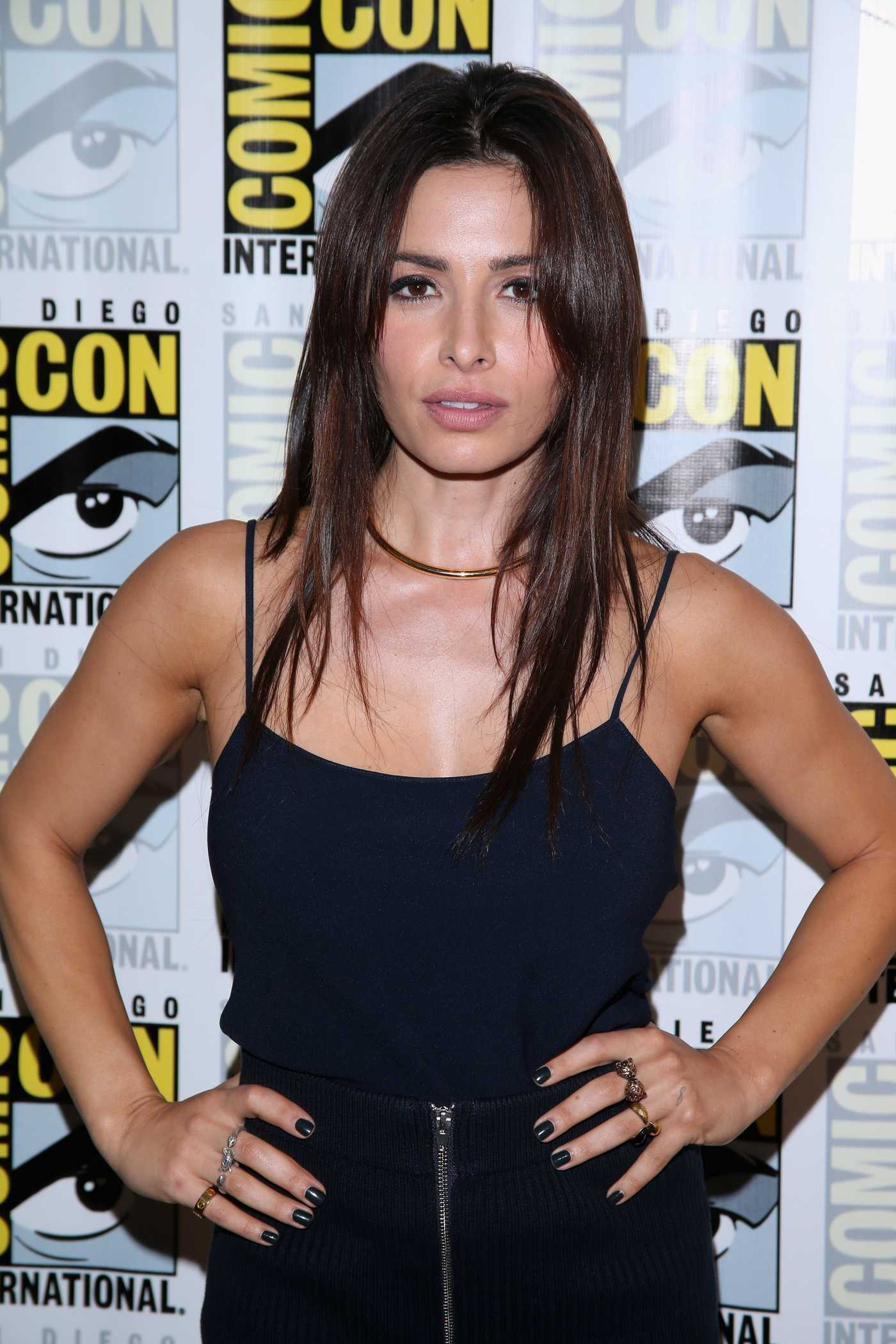 Sarah Shahi Person of Interest Press Line Panel at Comic-Con