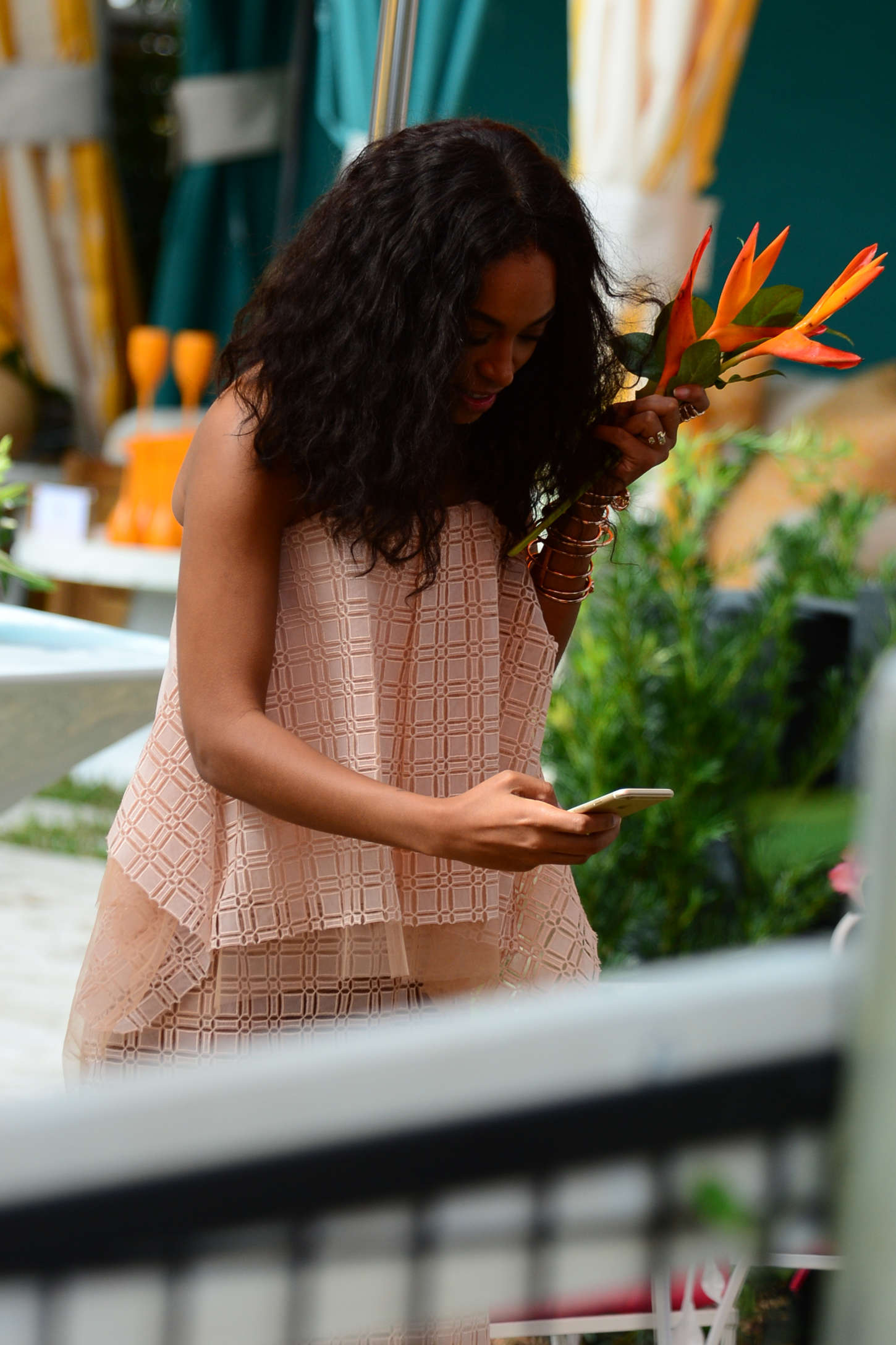 Solange Knowles Veuve Clicquot Carnaval Event in Miami
