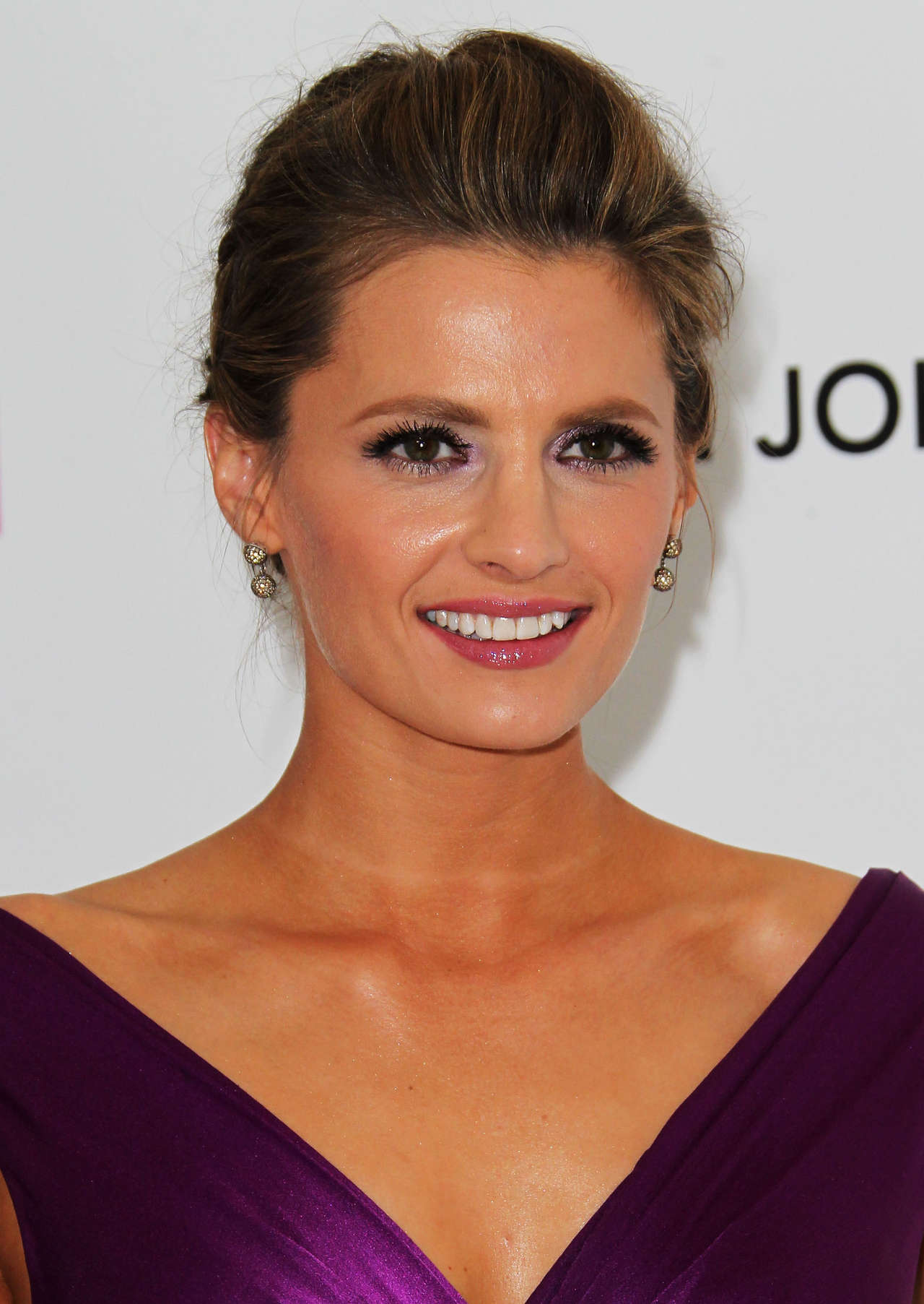 Stana Katic Oscar Elton John AIDS Foundation Academy Awards Party